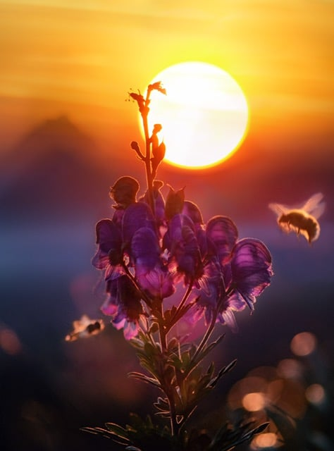 an image of bees in sunshine represents how advertising works