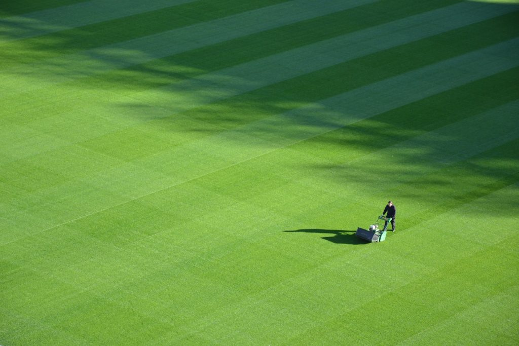 lawn mowing to illustrate post about maintenance tasks for a Marketing Information System